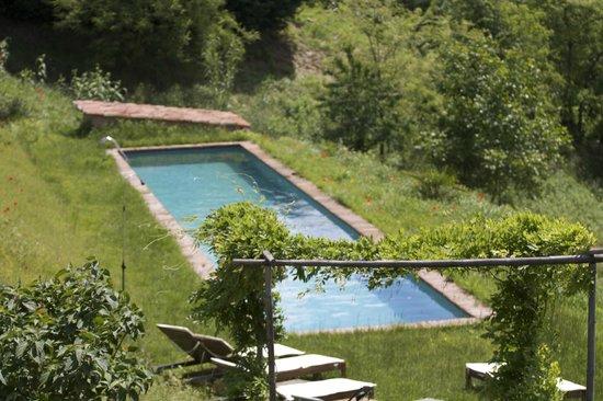 Casa Isabella: Beautiful natural swimming pool