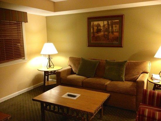 Wyndham at Bentley Brook: Livingroom / sofa bed