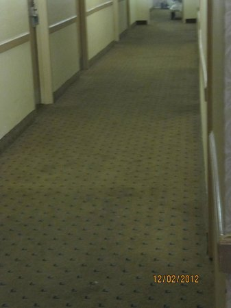 Days Inn Niagara at the Falls: Old Carpet