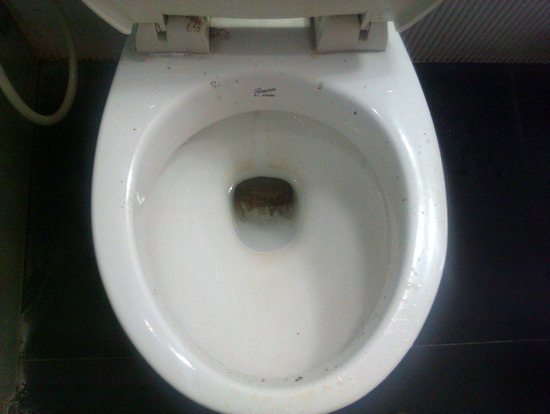 Hotel Trimoorti: un-cleaned WC