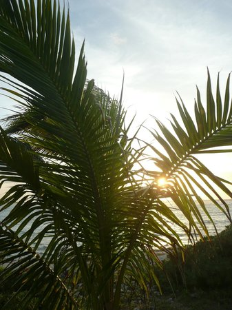 Grand Palladium Riviera Resort & Spa: playa