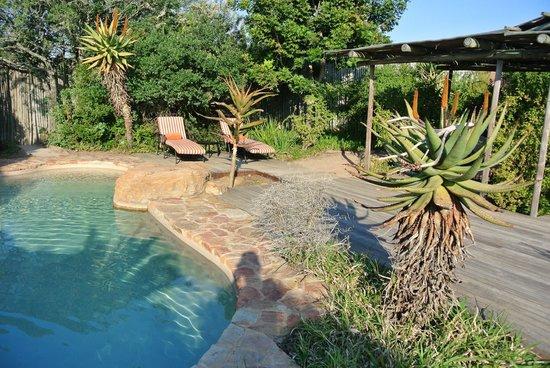 Kariega Ukhozi Lodge : pool
