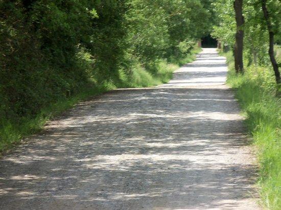 La Casella, Eco Resort : Road