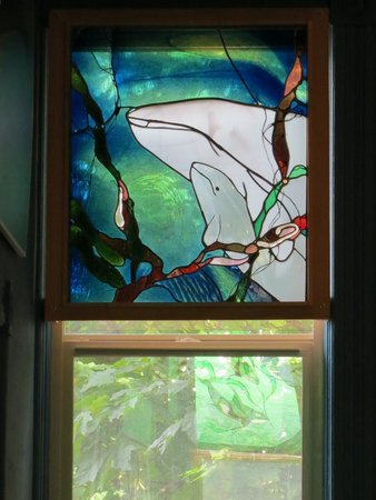 The Whale Museum: Whale window