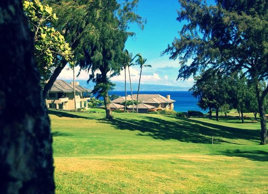 The Kapalua Villas, Maui: There could've been no better place for us to stay