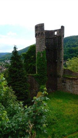 Schlosshotel Hirschhorn: Ausblick