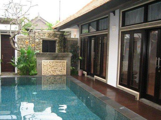 Villa Cantik Tresna : The pool