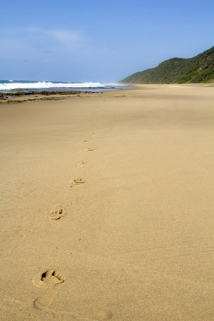 Cape Vidal Camp: the beach at cape vidal