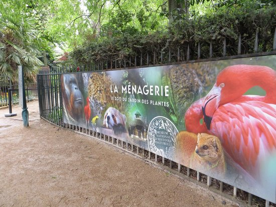 Zoo do jardin des plantes foto di jardin des plantes - Zoo jardin des plantes ...