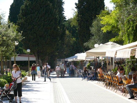 Villa Micika : Area lapad