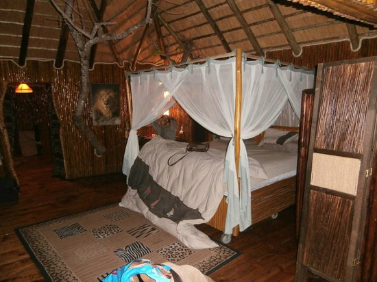 Pezulu Tree House Game Lodge: room