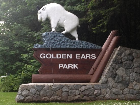 Golden Ears Provincial Park: We Have Arrived at Golden Ears