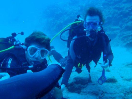 Pelagos Dive Centre: steff