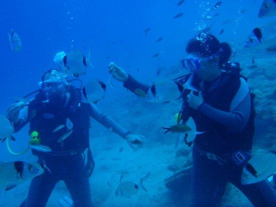 Pelagos Dive Centre: seb and lucie