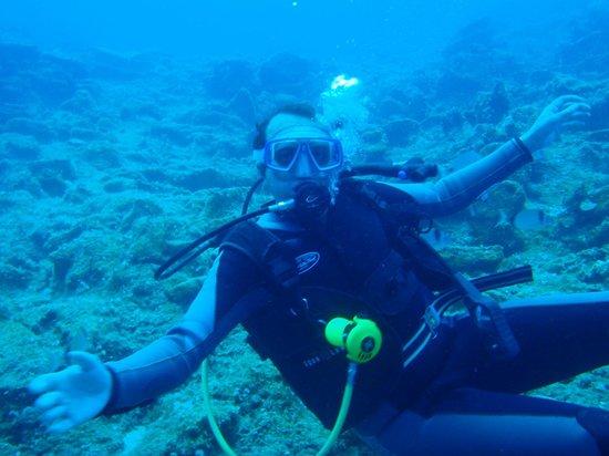 Pelagos Dive Centre: seb