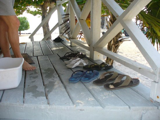 Blackbird Caye Resort: No shoes needed