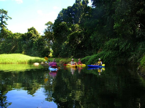 Babinda Australia  city images : ... Sunday morning! Foto di Babinda Kayak Hire, Babinda TripAdvisor