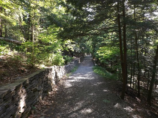Watkins Glen State Park: Indian Trail is an easier trail pack to the bottom.