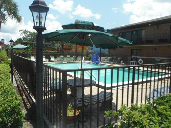 Golden Link Motel: Really Nice Pool to take a swim to cool off & relax