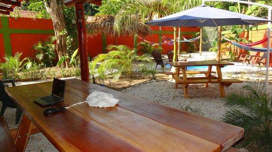 Hostel El Cactus: Picnic areas
