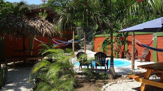 Hostel El Cactus: Garden