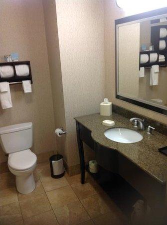 Hampton Inn & Suites Buffalo Downtown: large bathroom