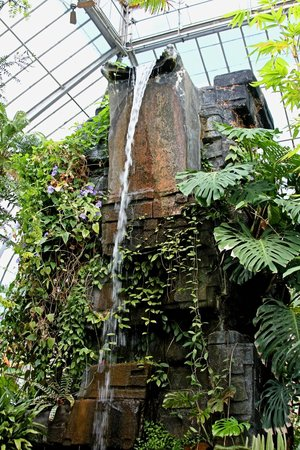 Buffalo And Erie County Botanical Gardens: Indoor Waterfall!