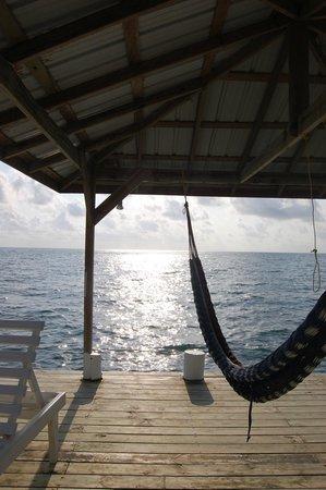Joyce & Frank's Bed & Breakfast: Peaceful Dock