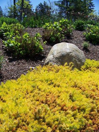 Coastal Maine Botanical Gardens: grounds