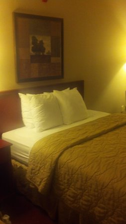 Comfort Inn & Suites: Comfy bed