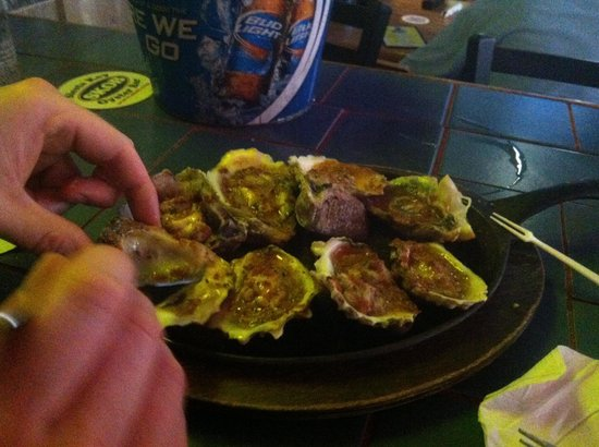 Tropical Beach Resorts: Oysters at SKOB!!