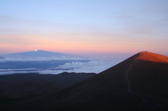 Arnott's Lodge : Mauna kea