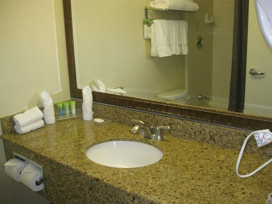 The Concourse Hotel at Los Angeles Airport - A Hyatt Affiliate: Bathroom