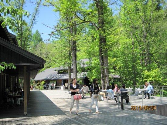 Karuizawa-machi, Japan: 自然に囲まれて、気持ちがいいですよ