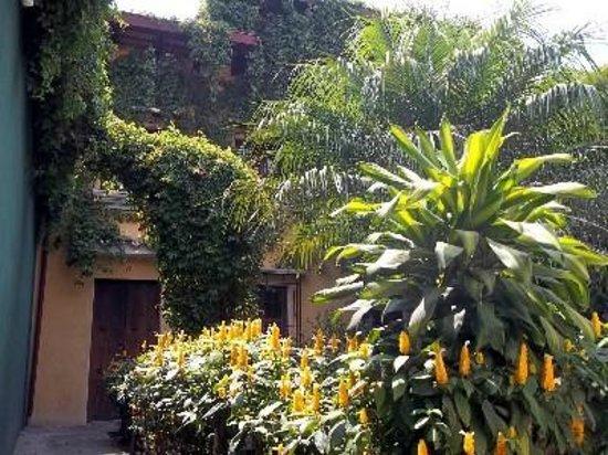 Hotel Casa Rustica: Colorful Courtyard