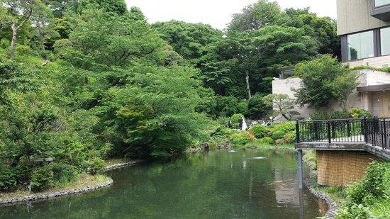 Hotel Chinzanso Tokyo: Pond in the garden