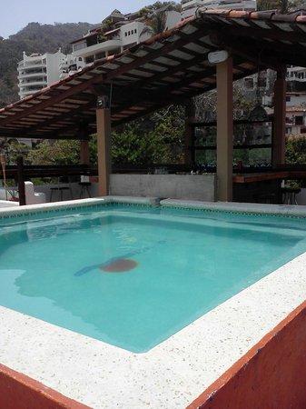 Amaca Hotel: Pool