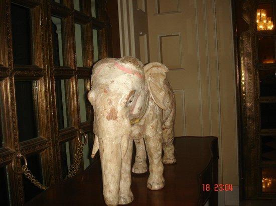 The Oberoi Udaivilas: Elephants