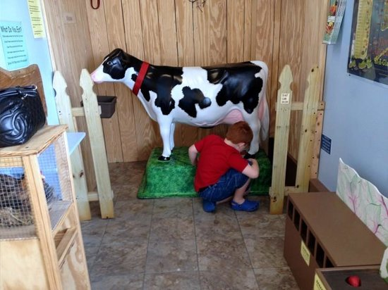 Childrens Museum of The Highlands: Milking the cow