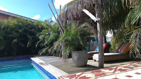 Casa Calexico: zwembad in de tuin