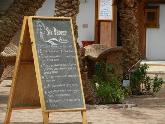 Sea cancer acacia au bord de la piscine de l 39 hotel - Acacia dive resort ...