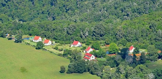 Forest Edge Nature-lovers' Retreat: Forest Edge as seen from the air