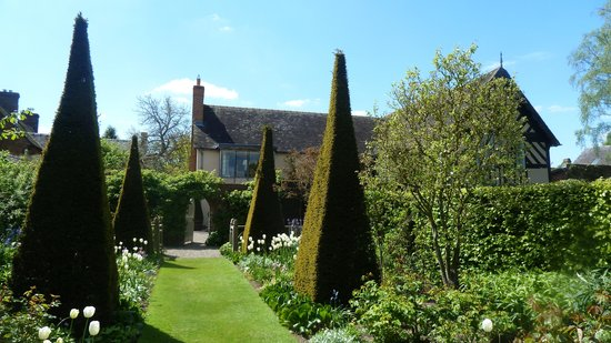 Wollerton Old Hall Garden: Fine topiary