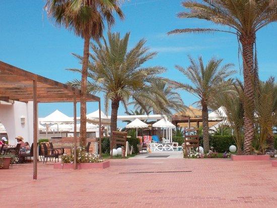 Hotel Meninx: Espace piscine