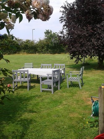 Manor Cottage Bed & Breakfast: Field / play area