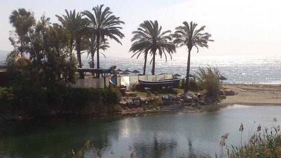 Paseo Maritimo: El Mediterráneo