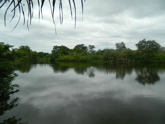 Jetwing Vil Uyana: view
