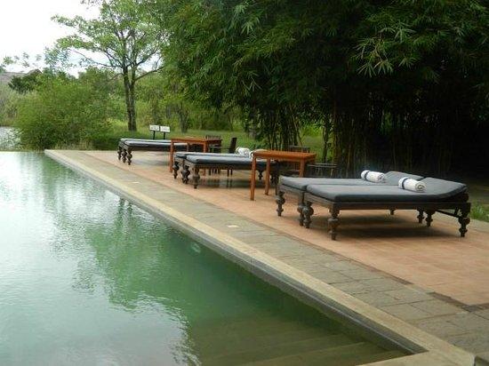 Jetwing Vil Uyana: next to pool