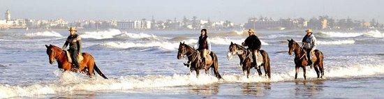 Ranch de Diabat: à cheval a la mer a Essaouira