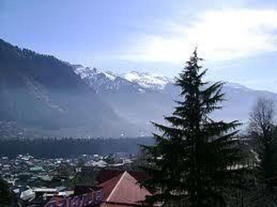 Hotel Snow Line : manali